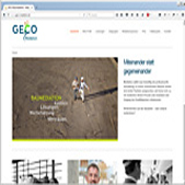 Webdesign für Geco-Mediation